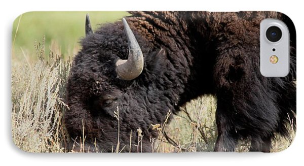 Grazing The Yellowstone Valley Phone Case by David Dunham