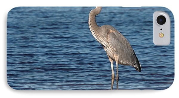 IPhone Case featuring the photograph Great Blue Heron by Art Whitton