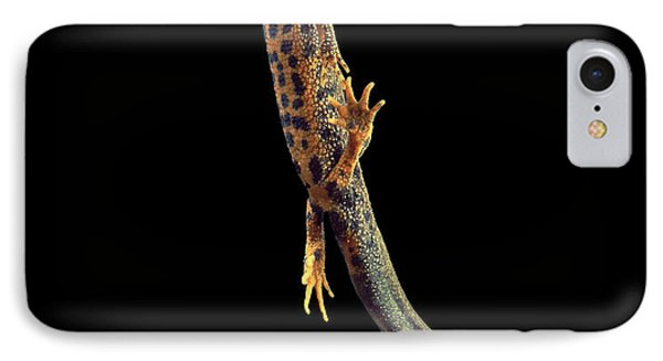 Great Crested Newt IPhone 7 Case