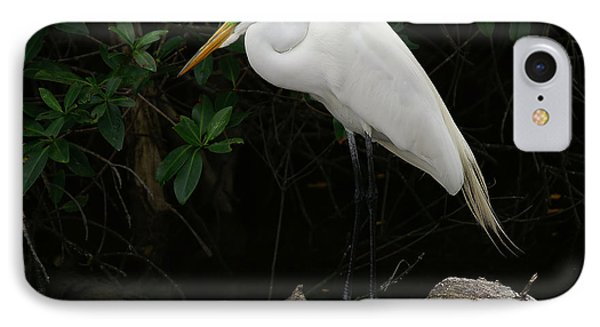 IPhone Case featuring the photograph Great Egret by Anne Rodkin