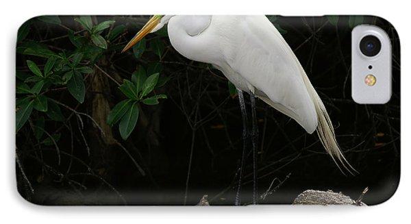 Great Egret IPhone Case by Anne Rodkin