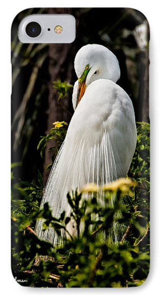Great Egret Phone Case by Christopher Holmes