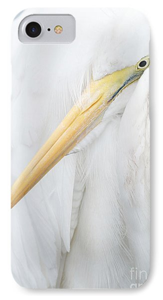 IPhone Case featuring the photograph Great Egret by Doug Herr