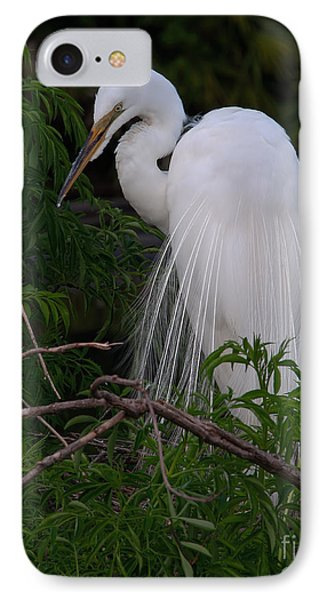 IPhone Case featuring the photograph Great Egret Nesting by Art Whitton