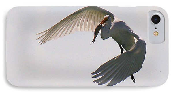 Great Egret Successful Fishing IPhone Case by Roena King