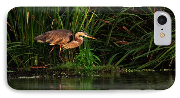IPhone Case featuring the photograph Great Heron by Deborah Smith