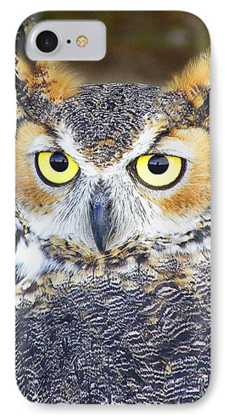 Great Horned Owl IPhone Case by Barbara Middleton