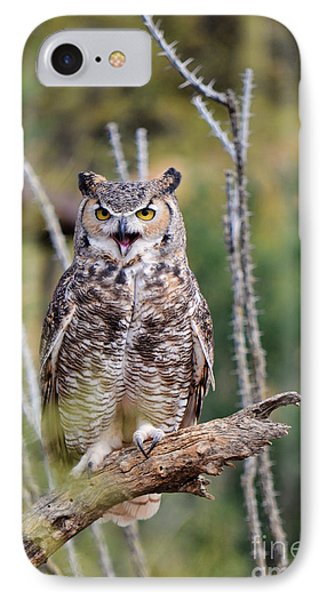 Great Horned Owl IPhone Case by Donna Greene