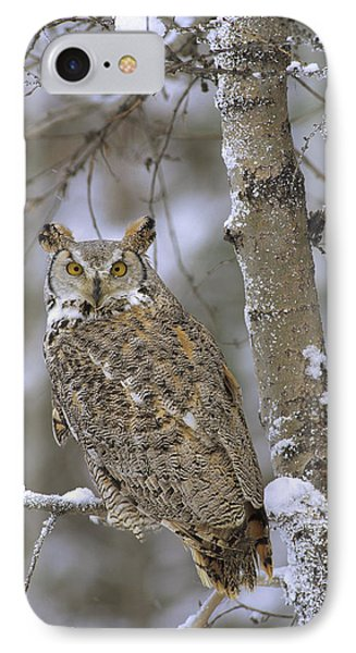 Great Horned Owl In Its Pale Form Phone Case by Tim Fitzharris