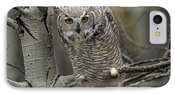Great Horned Owl Pale Form Kootenays Phone Case by Tim Fitzharris