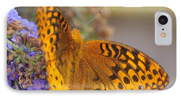 Great Spangled Fritillary Butterfly Phone Case by Paul Ward