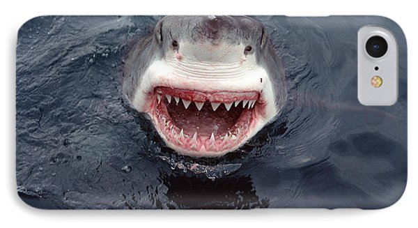 Great White Shark Smile Australia Phone Case by Mike Parry