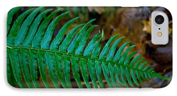 IPhone Case featuring the photograph Green Fern by Tikvah's Hope