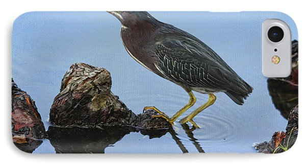 Green Heron Visiting The Pond Phone Case by Deborah Benoit