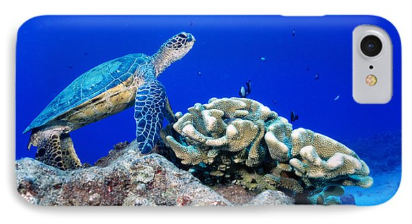 Green Sea Turtle Phone Case by Andrew G Wood and Photo Researchers