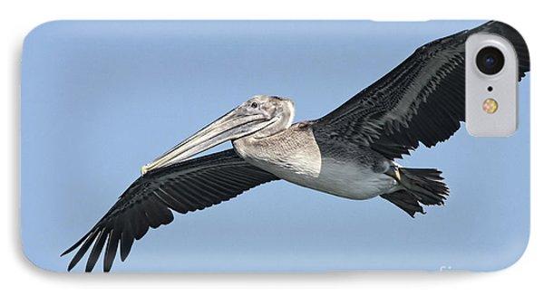 Grey Pelican Phone Case by Deborah Benoit