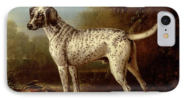 Grey Spotted Hound Phone Case by John Wootton