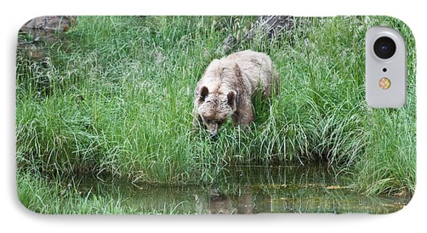 Grizzly Bear And Reflection On Prince Rupert Island Canada 2209 IPhone Case by Michael Bessler