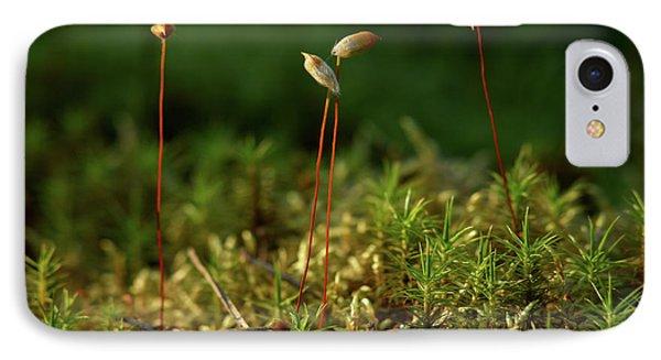 Haircap Moss Phone Case by Jouko Lehto