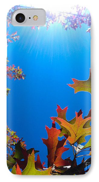 IPhone Case featuring the photograph Happy Autumn by CML Brown