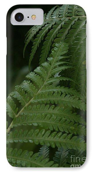 Hapuu Pulu Hawaiian Tree Fern - Cibotium Splendens IPhone Case by Sharon Mau