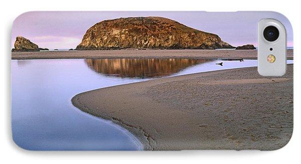 Harris Beach State Park Oregon Phone Case by Tim Fitzharris
