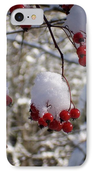 Hawthorn Berries In The Snow IPhone Case by Peter Mooyman
