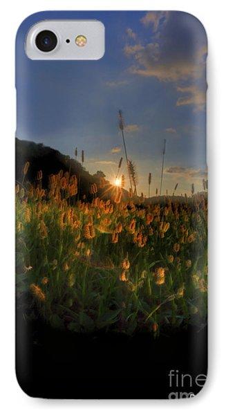 Hay Field Phone Case by Dan Friend