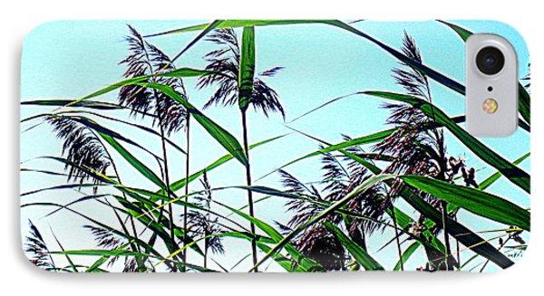 Hay In The Summer Phone Case by Pauli Hyvonen