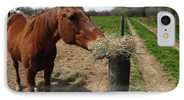 Hay Is For Horses Phone Case by Bill Cannon