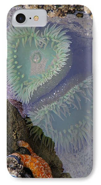 IPhone Case featuring the photograph Heart Of The Tide Pool by Mick Anderson