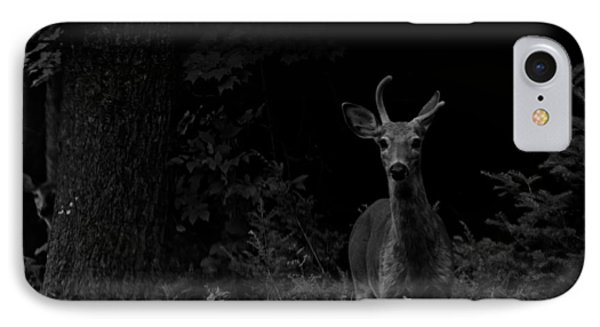IPhone Case featuring the photograph Hello Deer by Cheryl Baxter