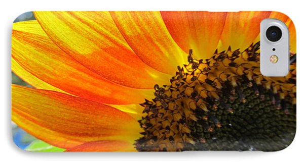IPhone Case featuring the photograph Hello Sunflower by Tina M Wenger