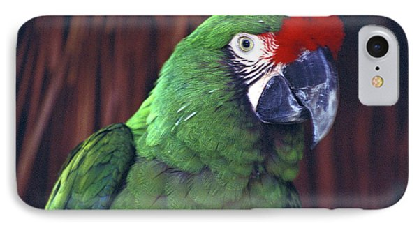 IPhone Case featuring the photograph Here's Looking At You Military Macaw Riviera Maya Mexico by John  Mitchell