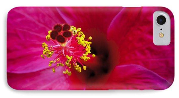Hibiscus Macro Phone Case by Joe Carini - Printscapes