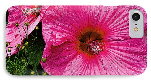 IPhone Case featuring the photograph Hibiscus by Michael Friedman