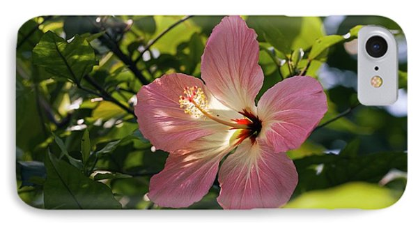 Hibiscus Rosa-sinensis Phone Case by Dr Keith Wheeler