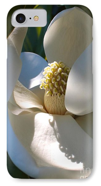 Hidden Magnolia IPhone Case by Carol Groenen