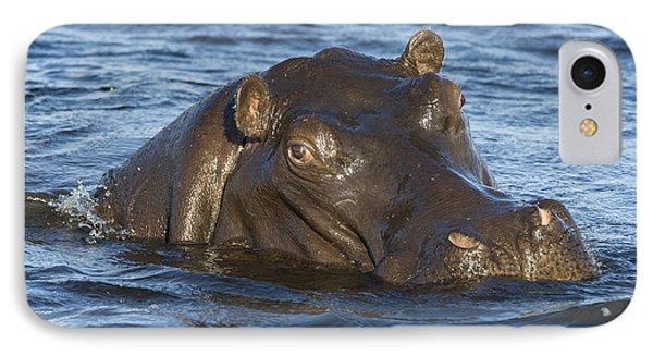 Hippopotamus Hippopotamus Amphibius Phone Case by Suzi Eszterhas