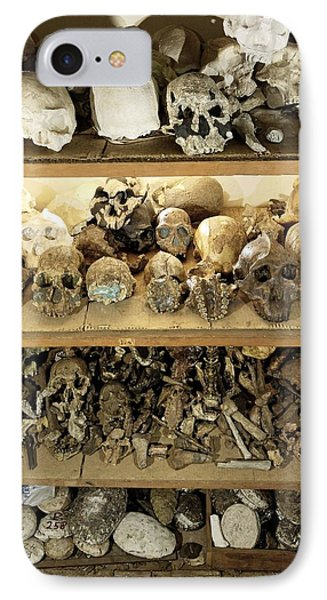 Hominid Skull Casts Phone Case by Volker Steger