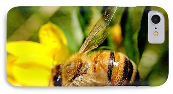 IPhone Case featuring the photograph Honey Bee by Chriss Pagani