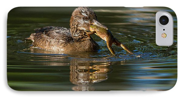 Hooded Merganser And Bullfrog Phone Case by Mircea Costina Photography