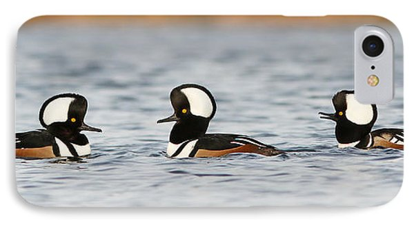 Hooded Mergansers IPhone Case by Mircea Costina Photography