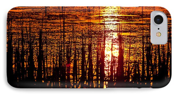Horicon Marsh Sunset Wisconsin Phone Case by Steve Gadomski