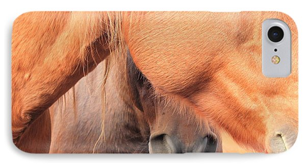Horse Hide 2 IPhone Case by Jim Sauchyn