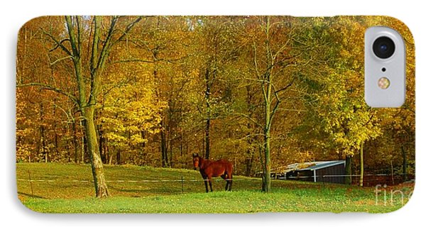 Horse In Autumn Phone Case by Kathleen Struckle