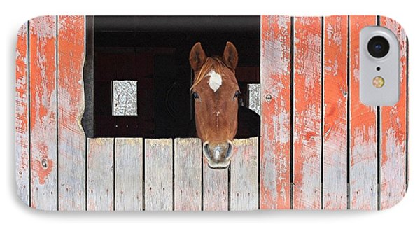 IPhone Case featuring the photograph Horse In The Barn by Laurinda Bowling