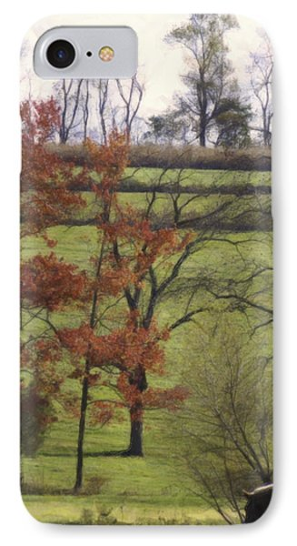 Horse On The Pasture Phone Case by Trish Tritz