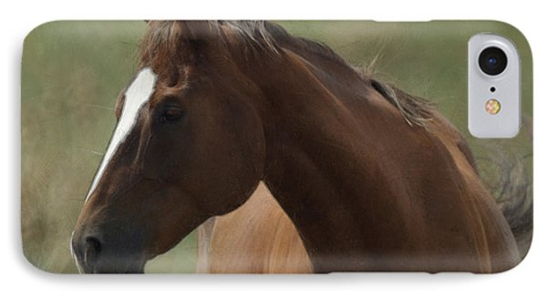 Horse Painterly Phone Case by Ernie Echols