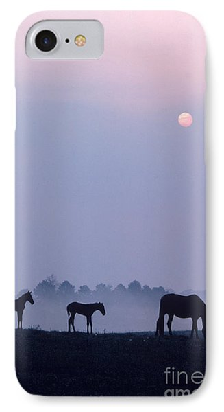 Horses In Kentucky Phone Case by Frederica Georgia and Photo Researchers
